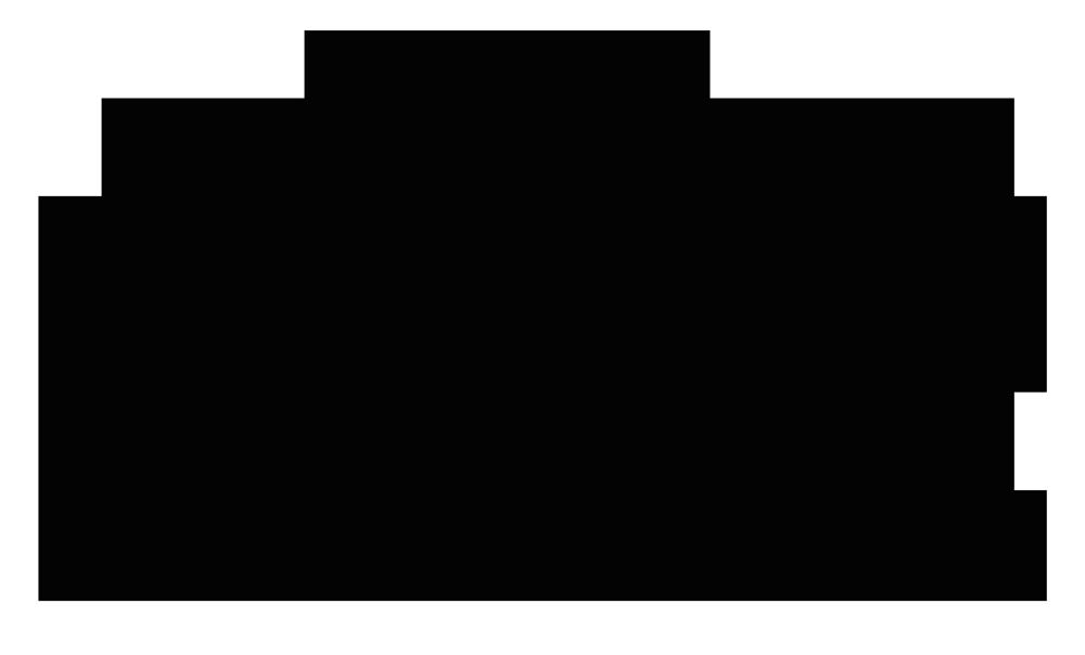 Mochi To Go Logo